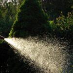 regar plantas exterior